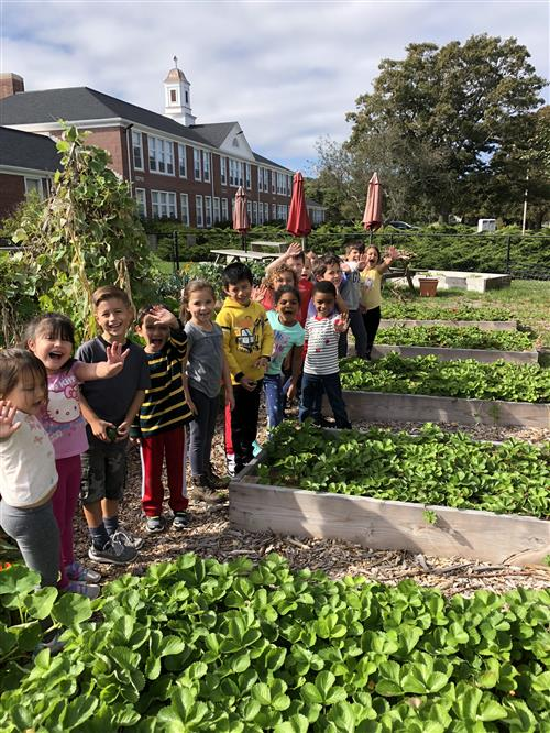 Innovation School Garden